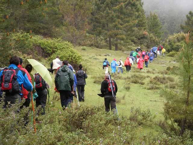 """El programa """"Paseando por los senderos 2011"""" lleva a 230 personas por espacios naturales de Sierra Mágina, Sierra Morena y la Sierra de Segura"""