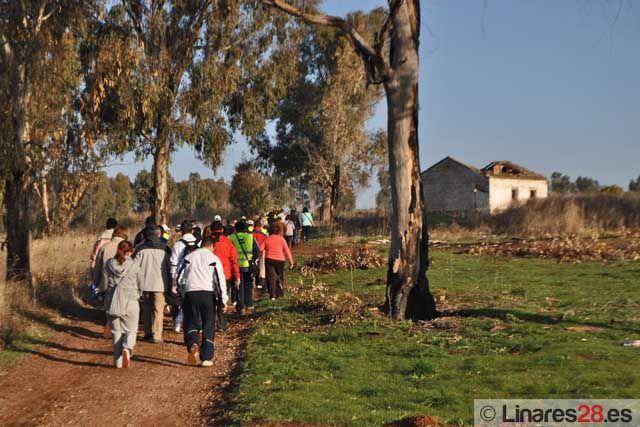 Linares celebra la festividad de Santa Bárbara