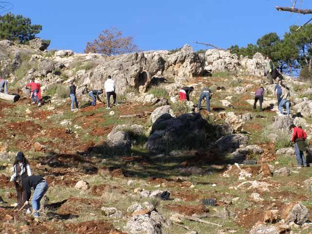 La UJA participa la próxima semana en una campaña de reforestación participativa de voluntariado ambiental que tendrá lugar en la Sierra de Cazorla