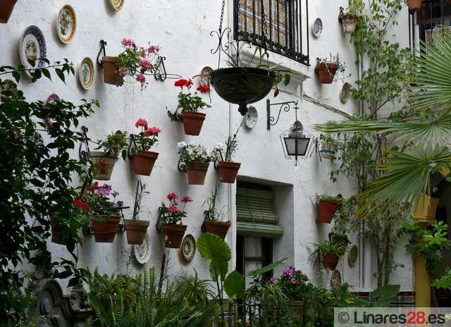 Cariño, vente para España, el paraíso te espera