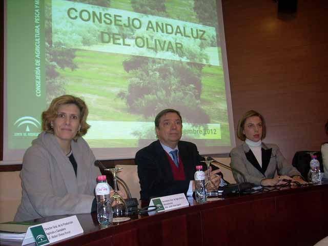 Constituido el Consejo Andaluz del Olivar como instrumento para la mejora y el fomento de la calidad de este cultivo