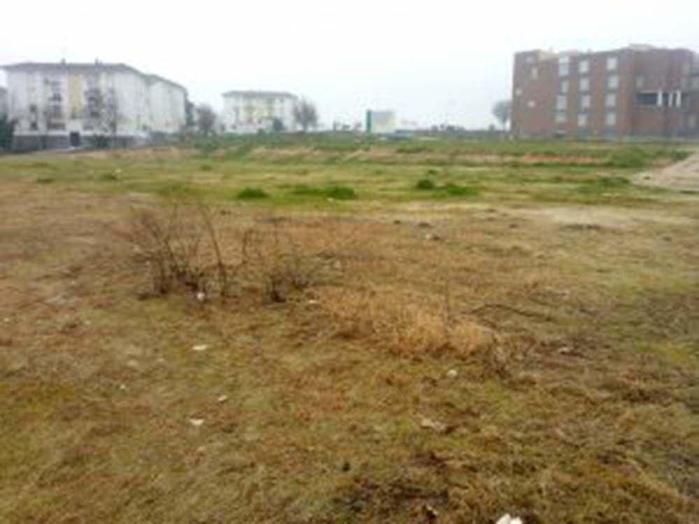 El PA sugiere al Ayuntamiento de Linares una solución para el antiguo campo de fútbol de La Paz