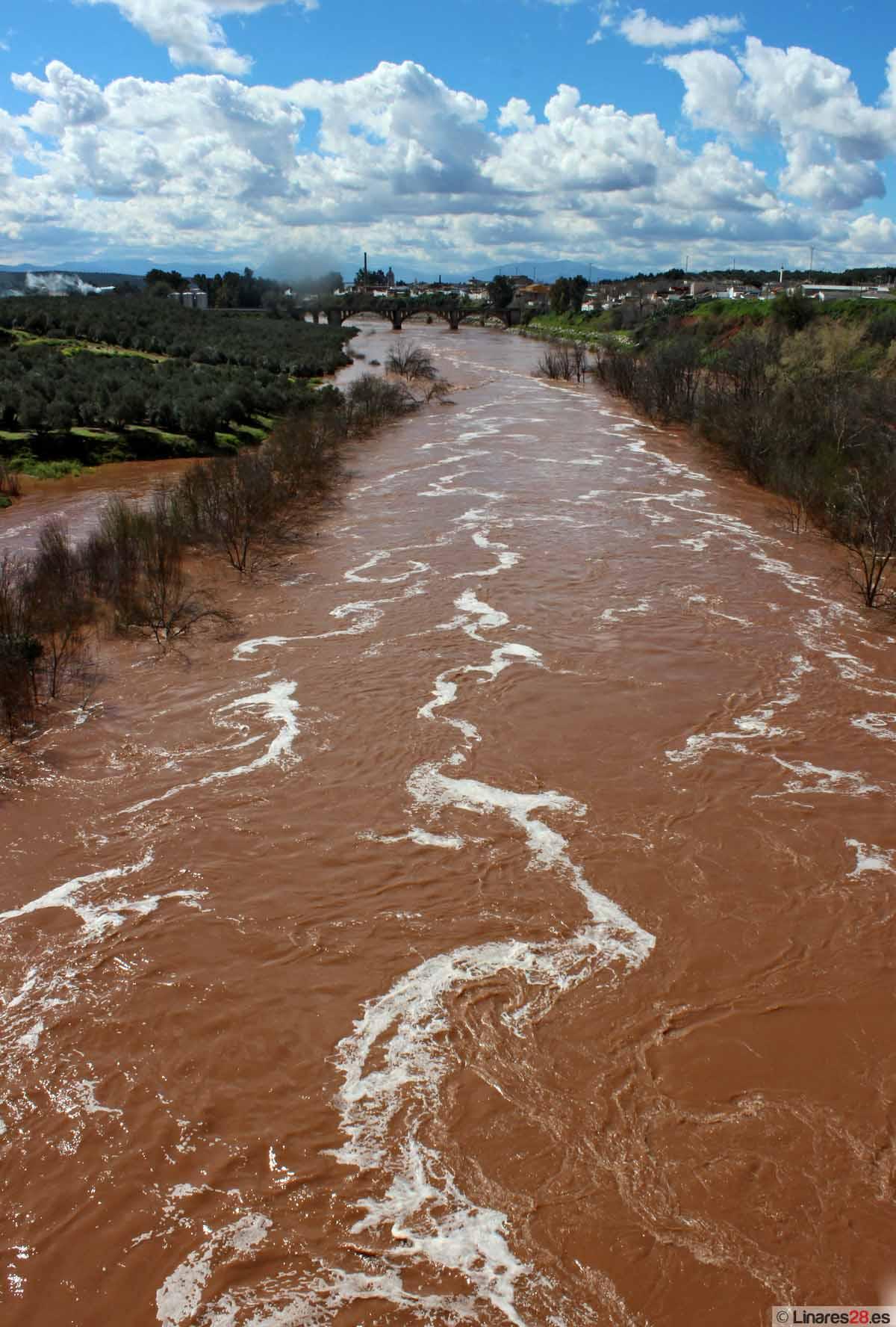 El espectáculo del agua en Linares