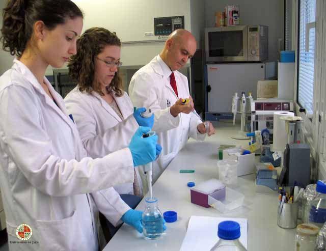 Analizan los componentes del aceite de oliva virgen que tienen efectos beneficiosos en la prevención del cáncer