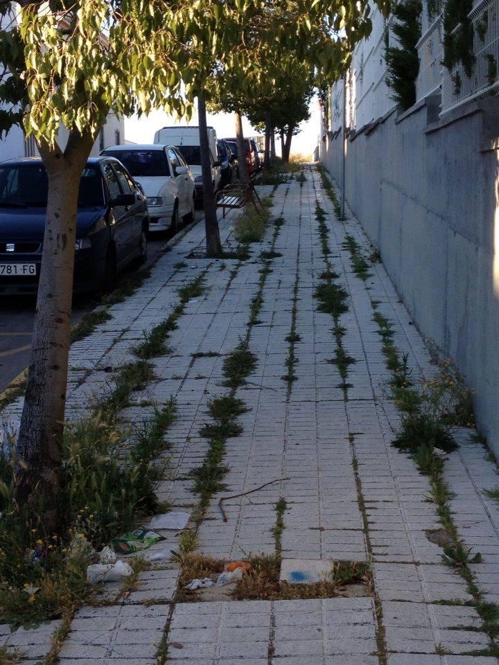 El Partido Popular lamenta el abandono que existe en barrios de la ciudad