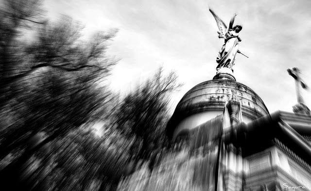 Cementerio de La Recoleta -Buenos Aires-