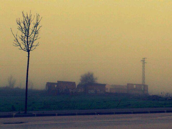 Linares amanece con niebla