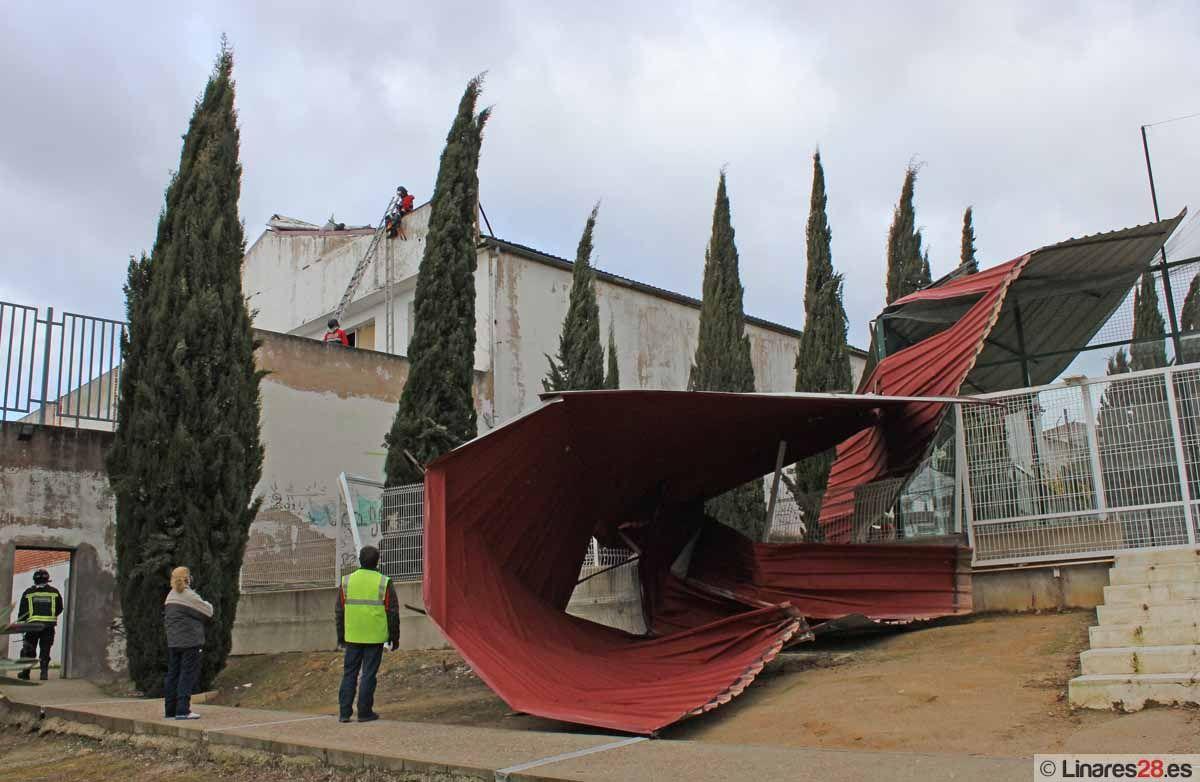 Efectos del temporal de viento en Linares