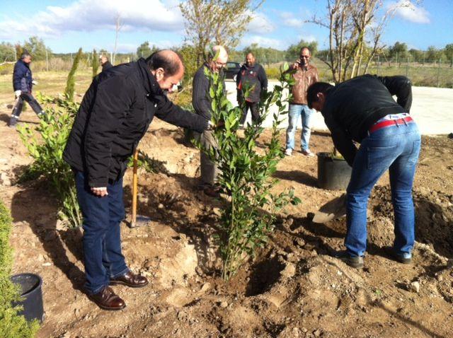 El Ayuntamiento inicia la replantación del yacimiento de Cástulo