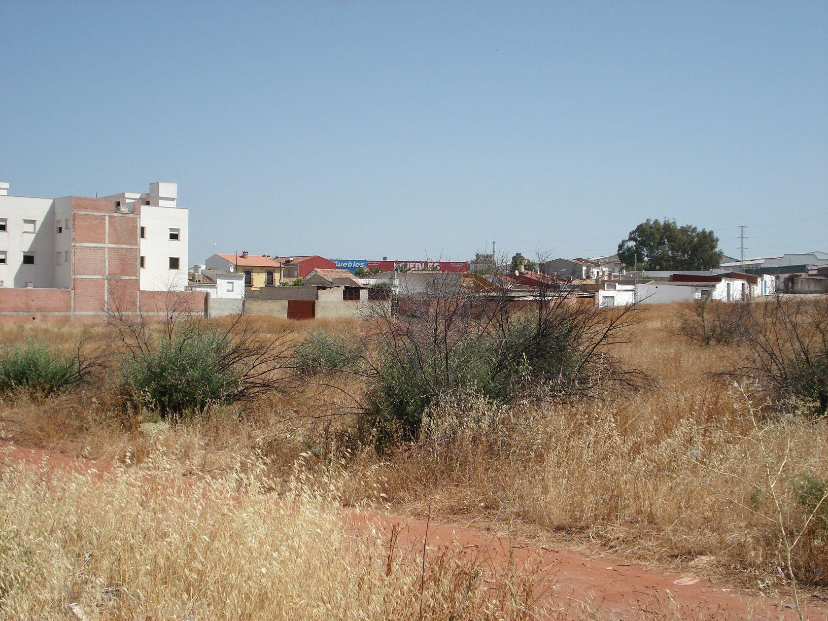 AVRA estudia ceder parte de sus terrenos en Los Rubiales para huertos sociales