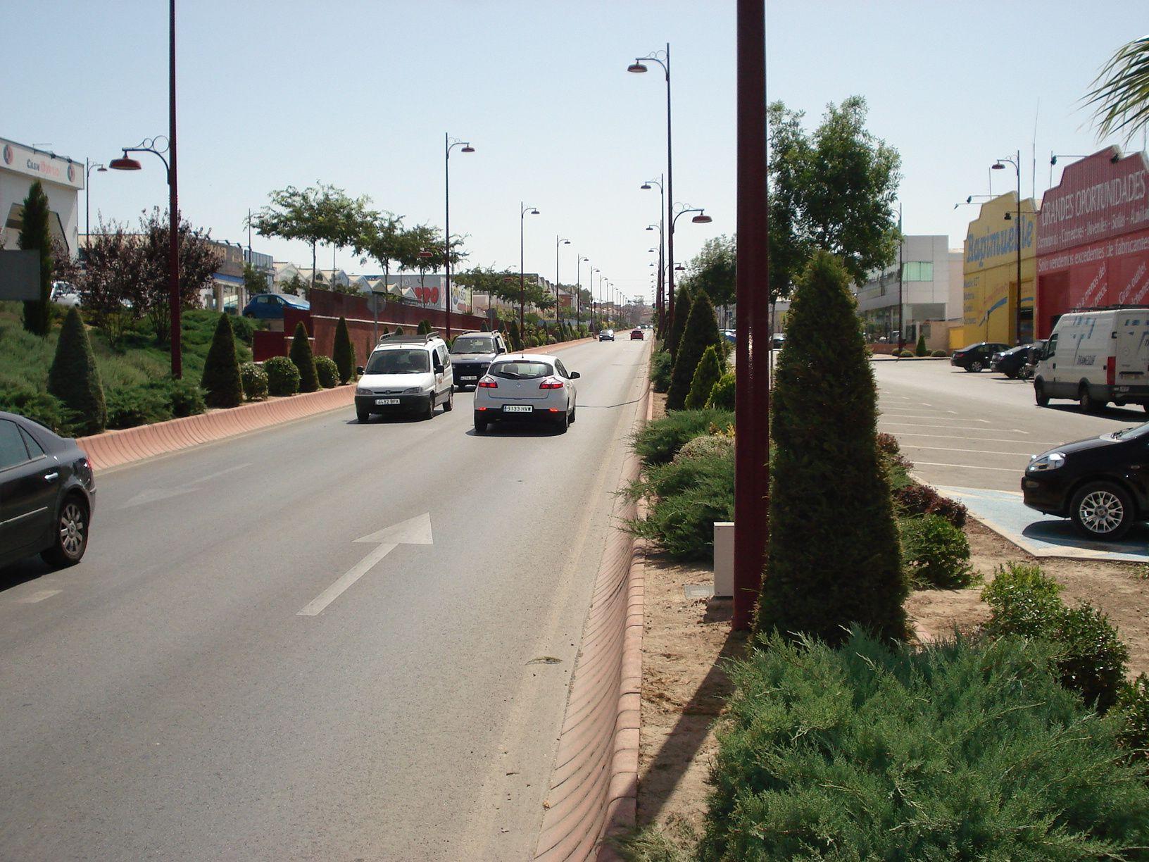 El Ayuntamiento presenta su propuesta para regularizar Los Jarales