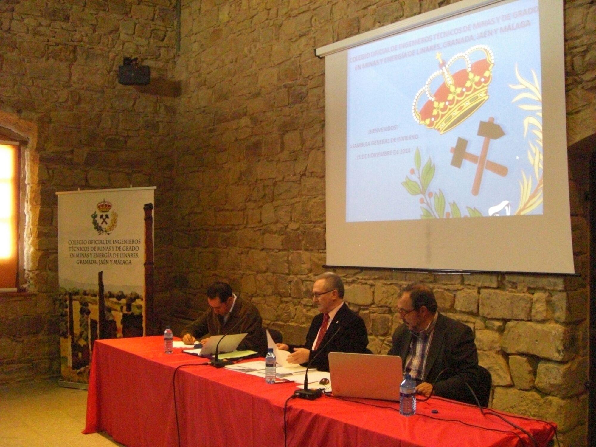 Asamblea del Colegio de Minas