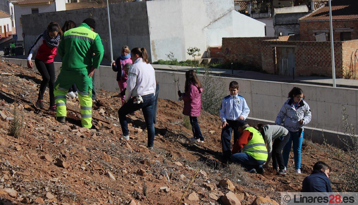 Linares duplica sus zonas verdes en los últimos diez años