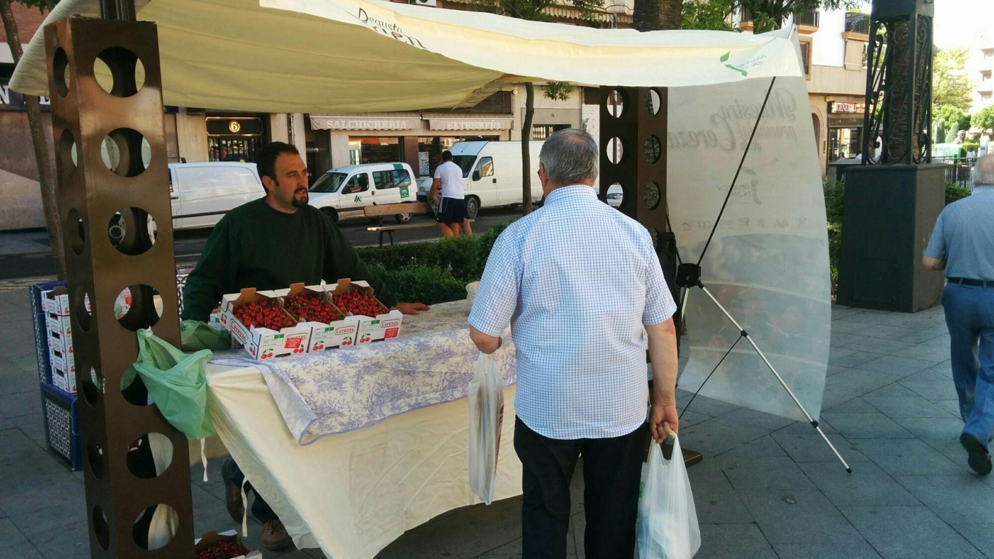 En estos momentos Feria de la Cereza en Linares