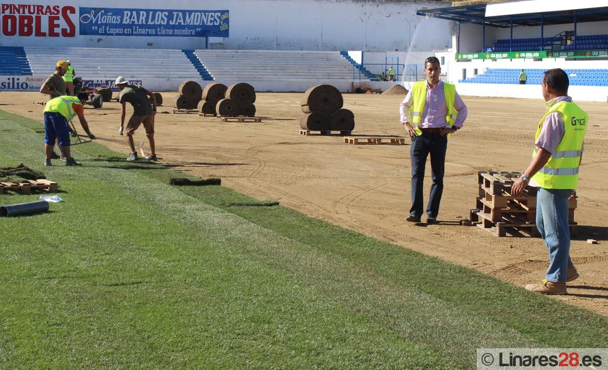 Obras nuevo césped Estadio de Linarejos