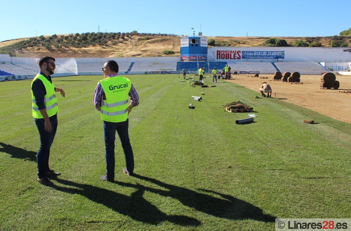 El césped de Linarejos estará listo para el inicio de la temporada oficial