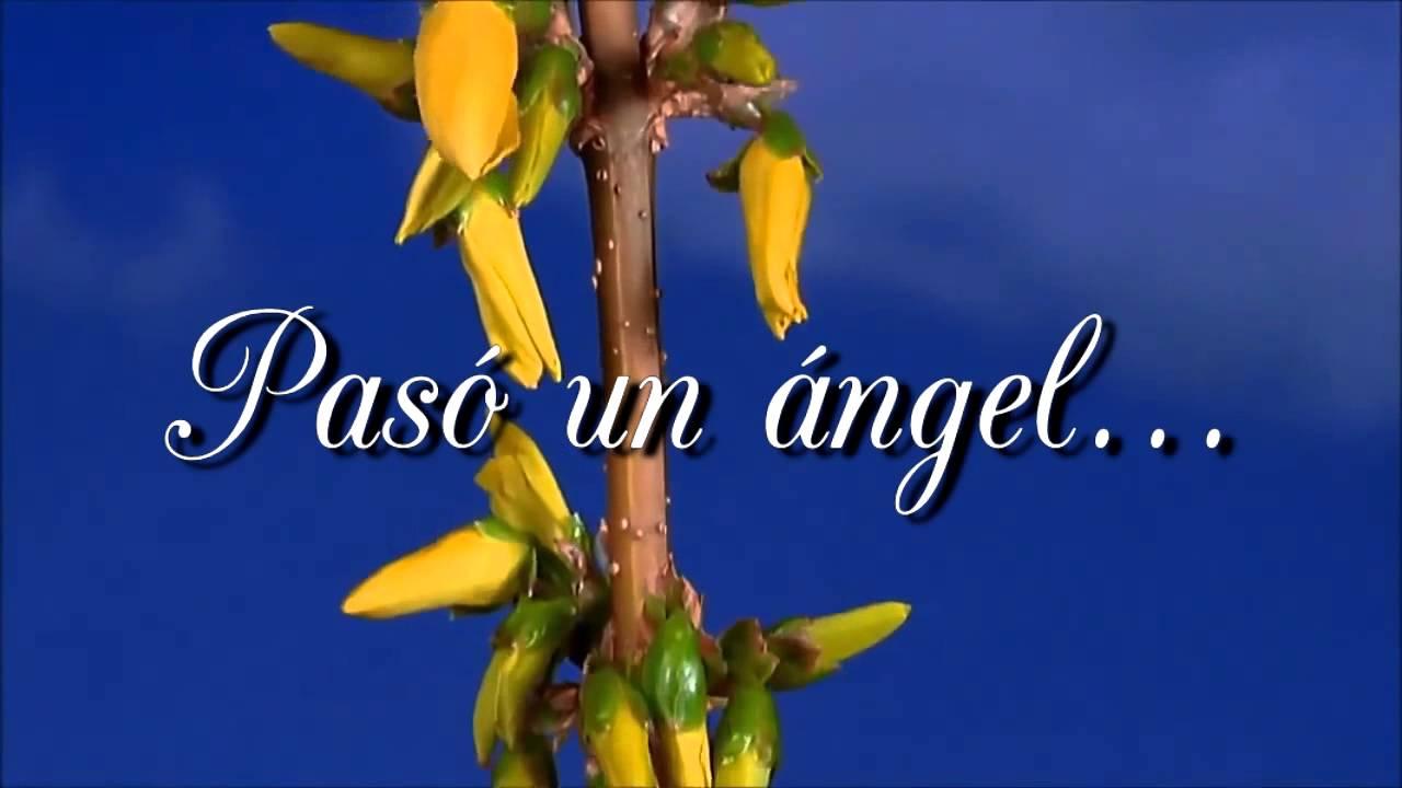 Pasó un ángel