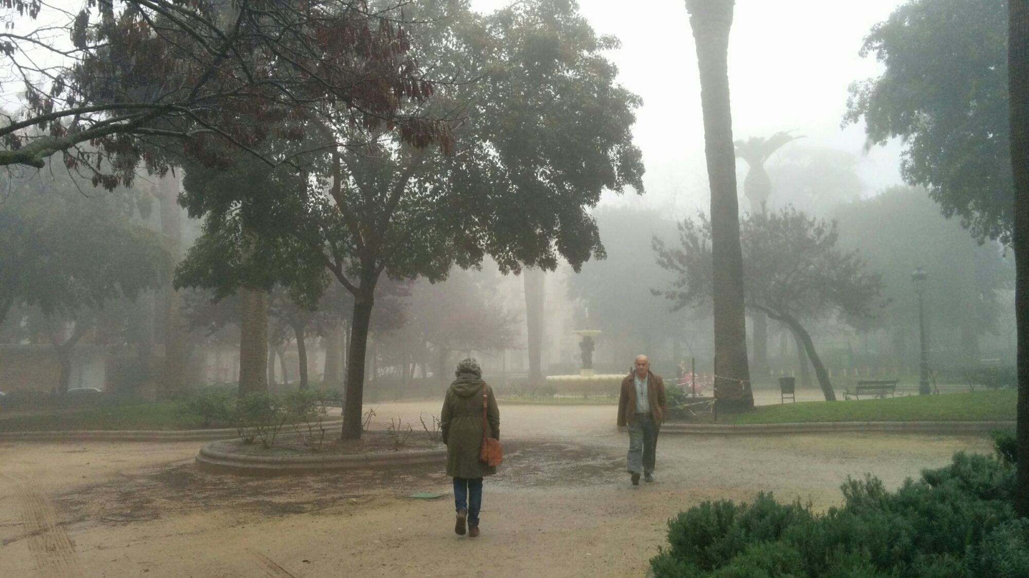 Día de niebla en Linares