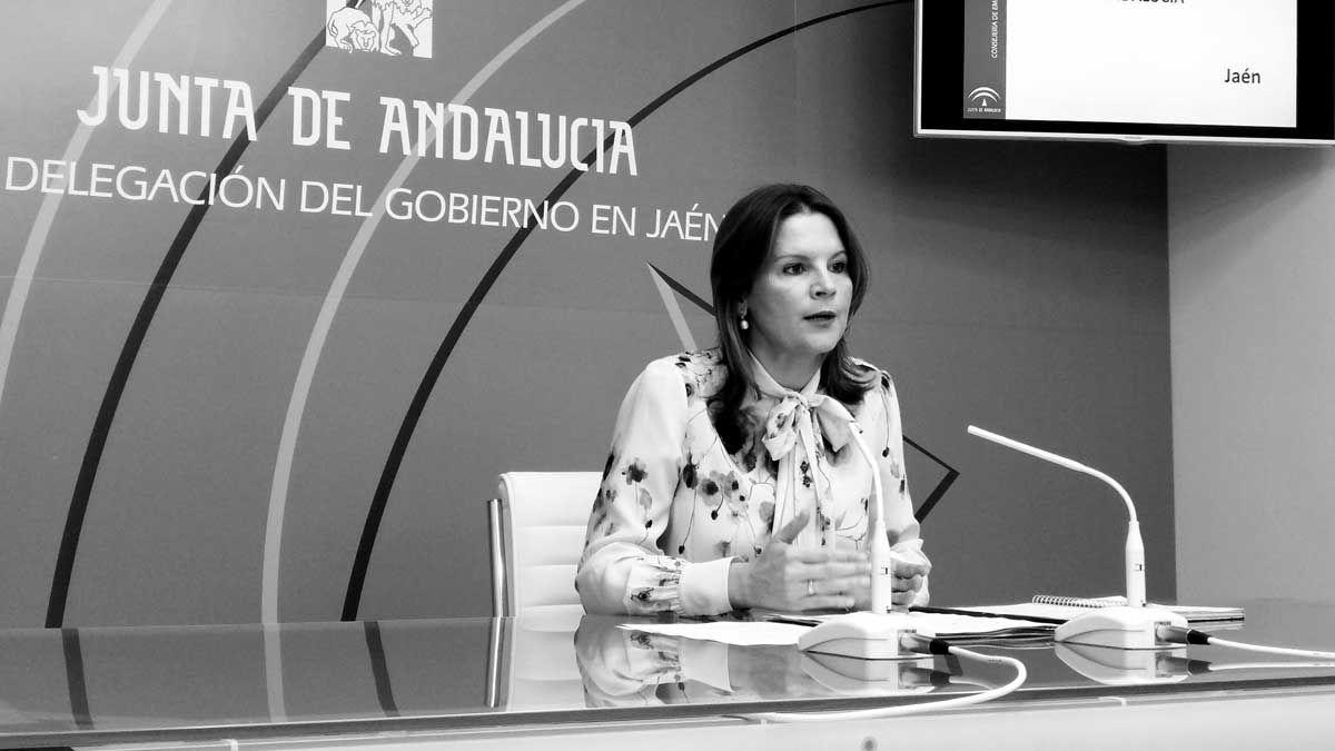 El desempleo se reduce en la provincia de Jaén en más de un 10 por ciento en el año 2016, con 5.400 parados menos