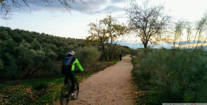 Vía Verde en Linares