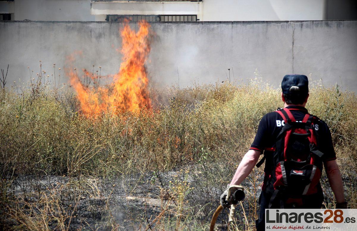 Incendio de pastizal en la zona alta de Linares