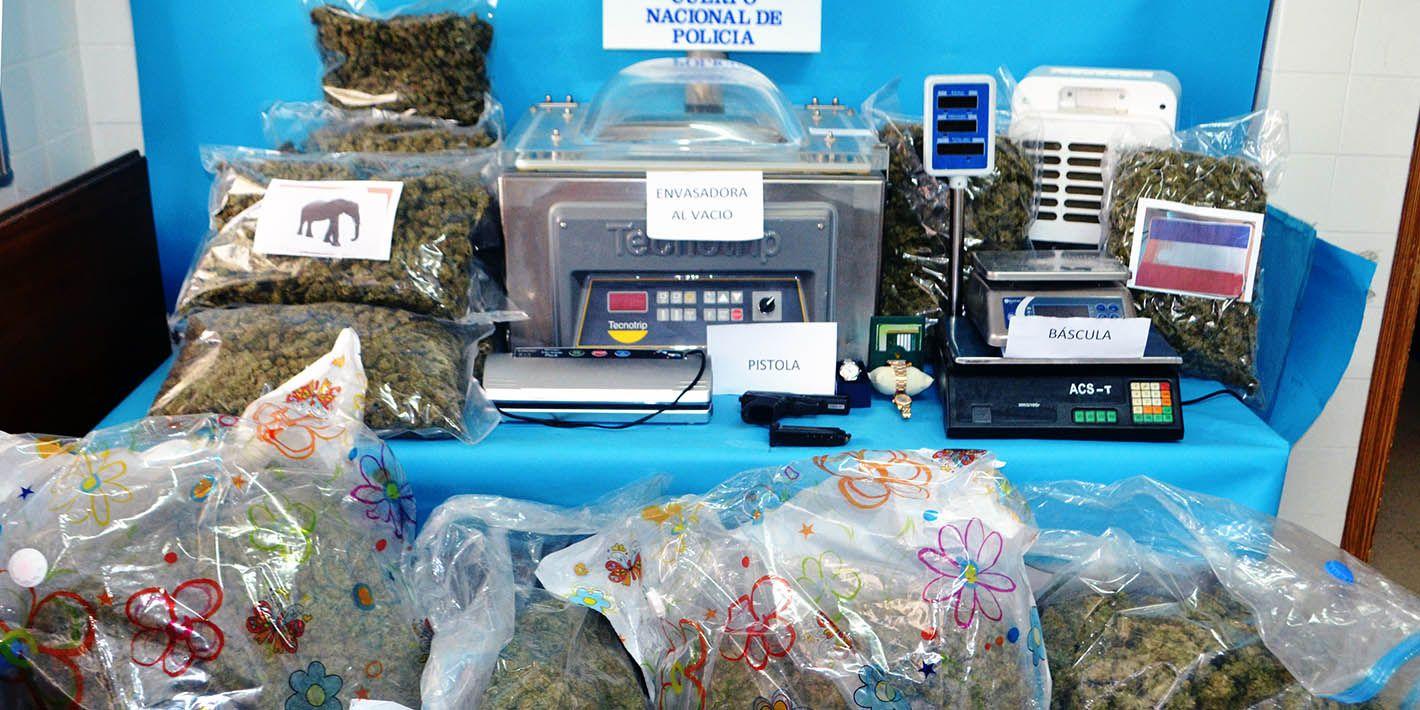 VÍDEO SUCESOS | Desarticulado en Linares un centro de envasado y prensado de marihuana