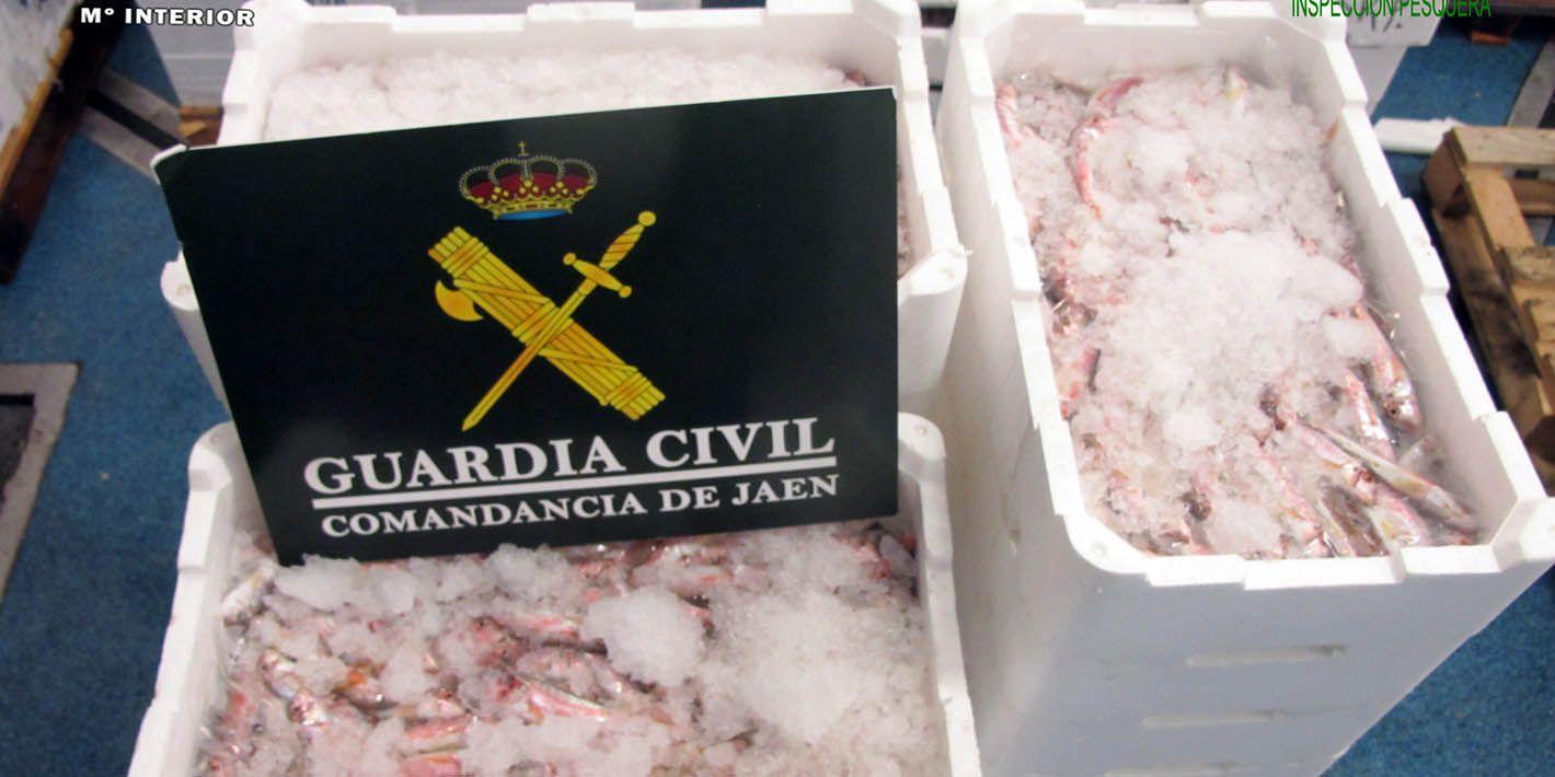 SUCESOS | La Guardia Civil interviene 80 Kg. de pescado inmaduro en el Polígono Guadiel