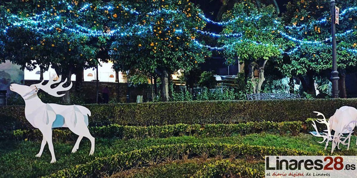 VÍDEO | El Ayuntamiento pide que se respeten los adornos de Navidad