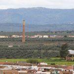 La Diputación se suma a la celebración del Día Mundial del Olivo que se conmemora mañana, 26 de noviembre