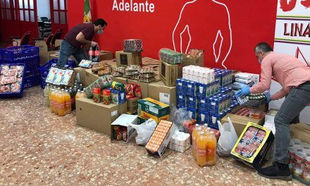 El Grupo Municipal del PSOE de Linares dona 4.700kg de alimentos y productos de primera necesidad para apoyar a las familias más necesitadas de nuestra ciudad
