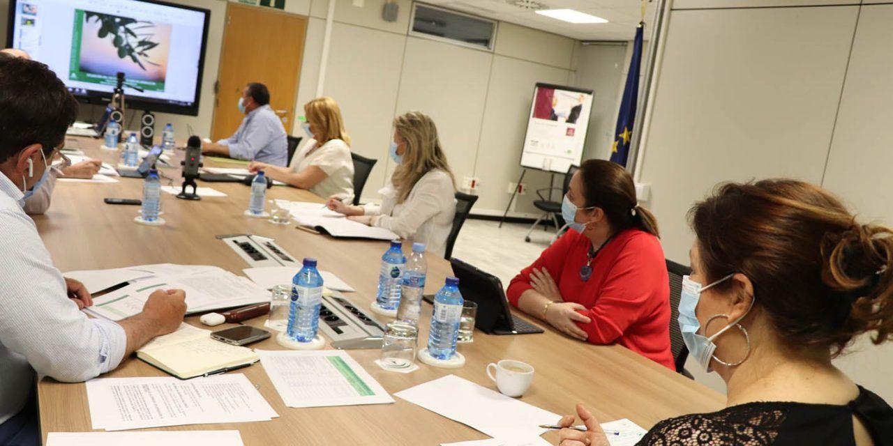 El Consejo Andaluz del Olivar pide activar un nuevo almacenamiento por más volumen y con el precio prefijado